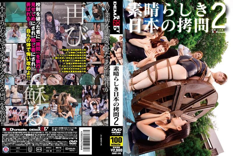 [SDMT-245] 素晴らしき日本の拷問 2