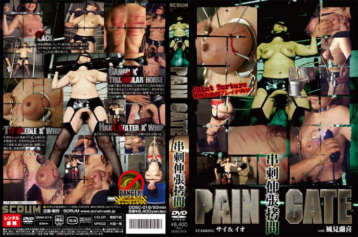 [DDSC-019] PAIN GATE 串刺伸長拷問 スパンキング・鞭打ち SM