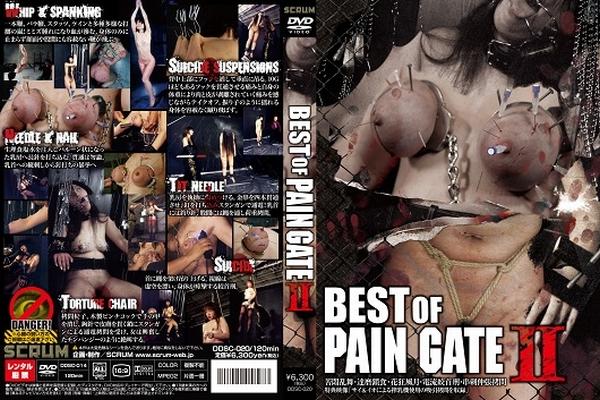 [DDSC-020] PAIN GATE シリーズ BEST版第2弾!