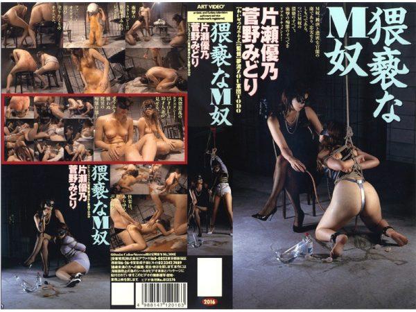 [ART-2016] Filthy Masochist Slave Midori Kano, Yuno Katase