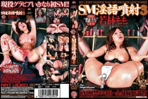 [ADV R0394] 00淫語噴射 0 SM解禁イキ狂い全身麻痺調教 その他SM Dirty Torture 辱め 636 MB