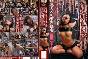 [ART 2314] S & M Filthy Beast Encyclopedia 8 Kozue Shibata