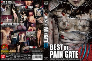 [DDSC-026] BEST OF PAIN GATE 3