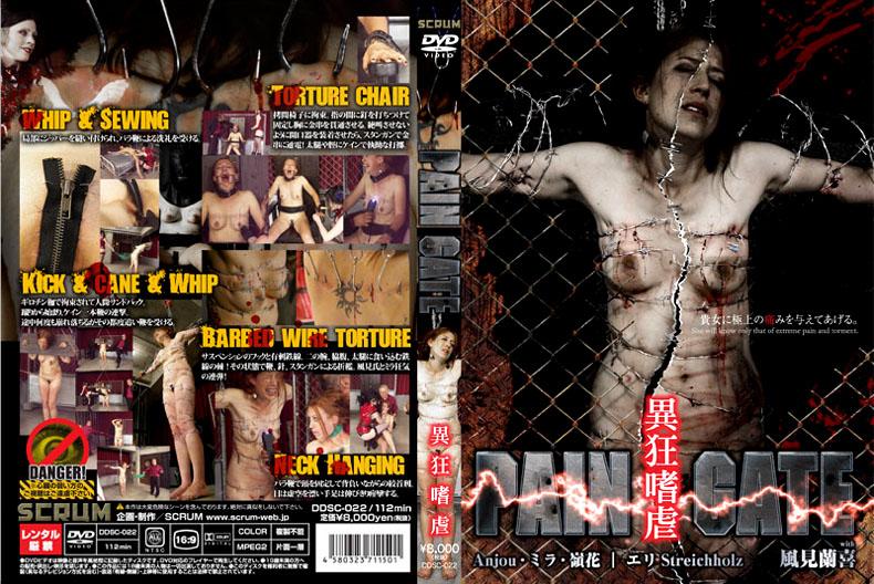 [DDSC-022] PAIN GATE 異狂嗜虐
