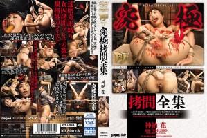 [GTJ-064] 究極拷問全集 SM TOHJIRO