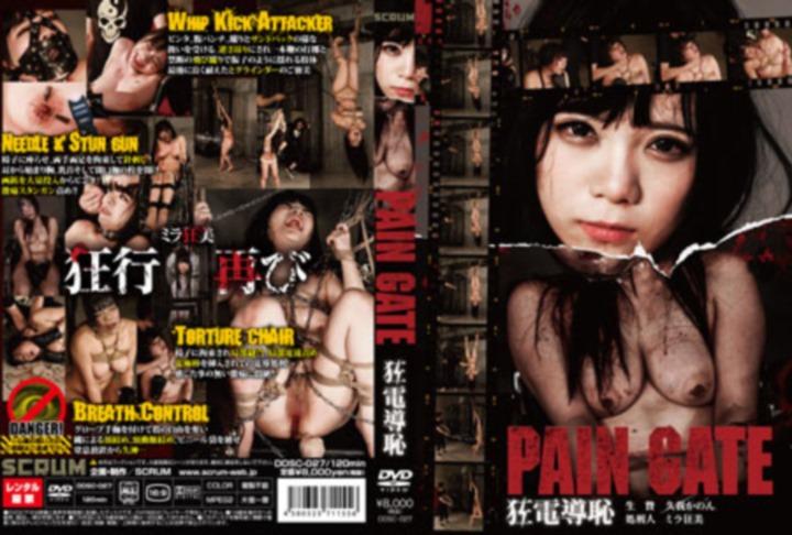 [DDSC-027] PAIN GATE 狂電導恥