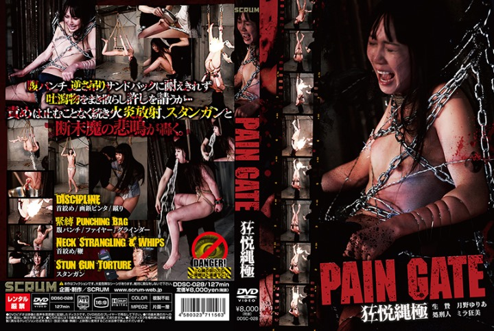 [DDSC-028] PAIN GATE 狂悦縄極