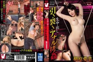 [VICD-334] 生中出し 引き裂きアナル拷姦 Actress Cum