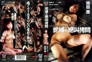 [JBD-099] 蛇縛の絶叫拷問 持田茜 Cum 5JB