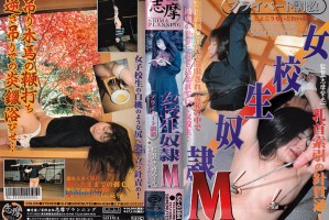 [SS-0384] Shima Bondage
