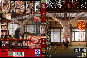 [GMA-014] 緊縛調教妻 画家のモデルとして縛られる人妻 病弱な夫のためと言いながら縄快楽に堕ちていく… 葉月桃