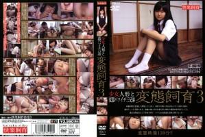 [STD-11] 少女人形と変態バツイチ三兄弟 変態飼育3